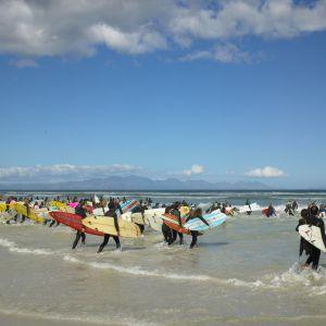 Surf-f.jpg