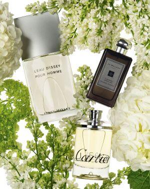 229-KW11-Perfume-Feat-w.jpg